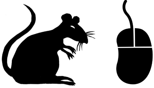 ratmouse.png