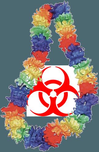 toxicparadise.png