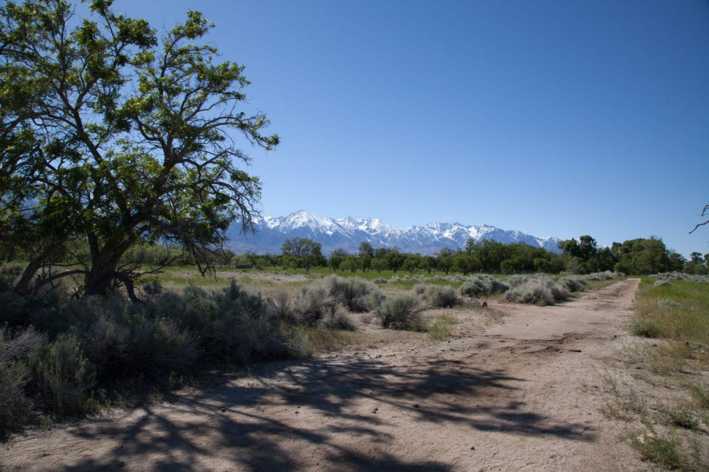 View of the Eastern Sierras from the Manzanar concentration camp. The buildings from the camp were relocated around Lone Pine and other nearby towns, but the roads of the camp exist for visitors to walk through. Photo by Joanne Kim