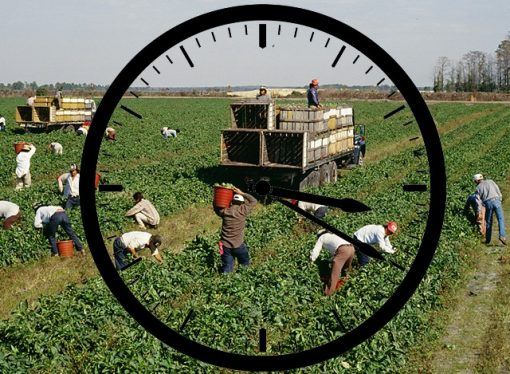Farm Worker Overtime Bill Heads for Another Vote
