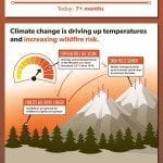 Wildfires Infographic