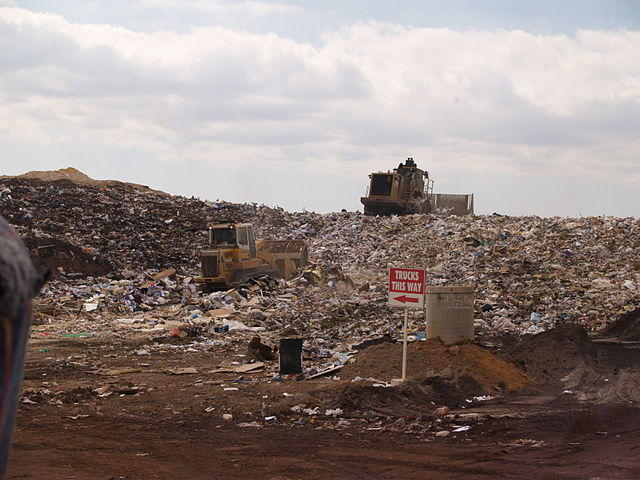 Landfill_face.jpg
