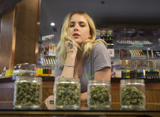 High Times: How Will Budtenders and Trimmigrants Fare If Pot Is Legalized?