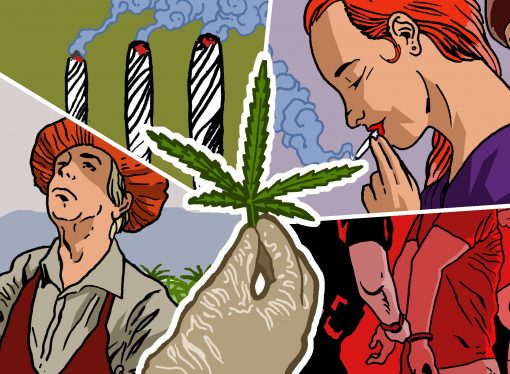 High Times: A New Series Looks at How Legalizing Marijuana Would Transform California