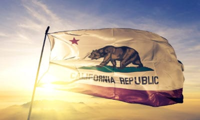 The state flag of California